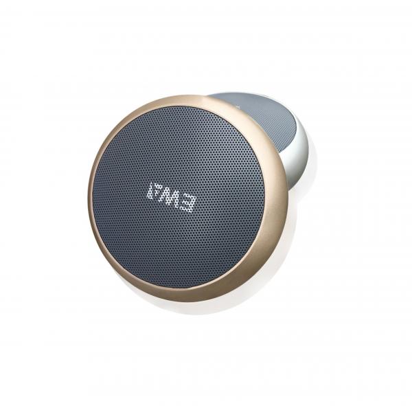 EWA A110 Bluetooth Speaker