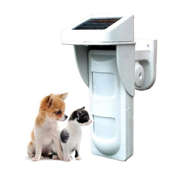 Dual PIR Wireless Outdoor Solar Detector Beam (Pet Immune To 20kg)